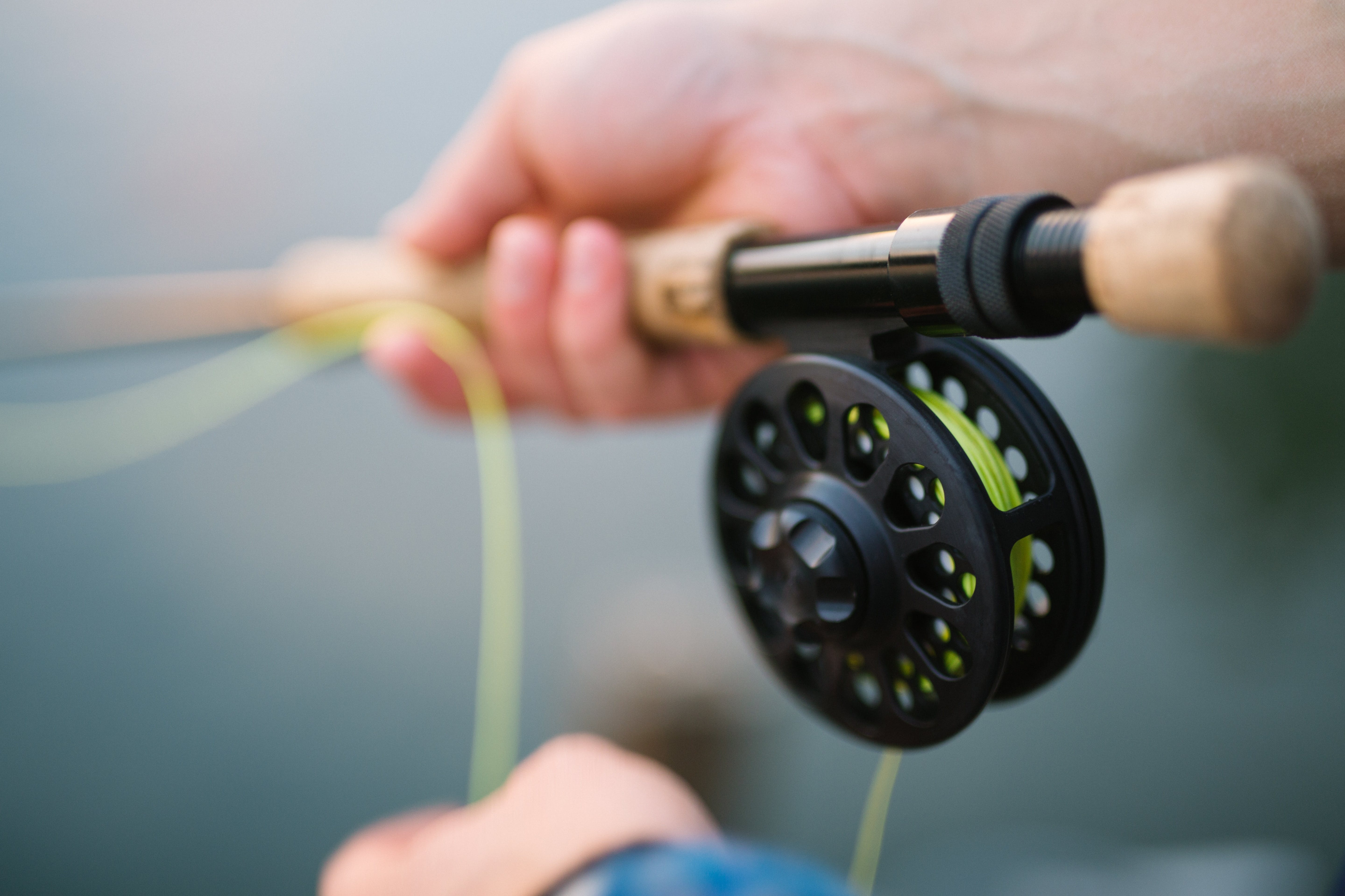 Rod and spinner, fly fishing