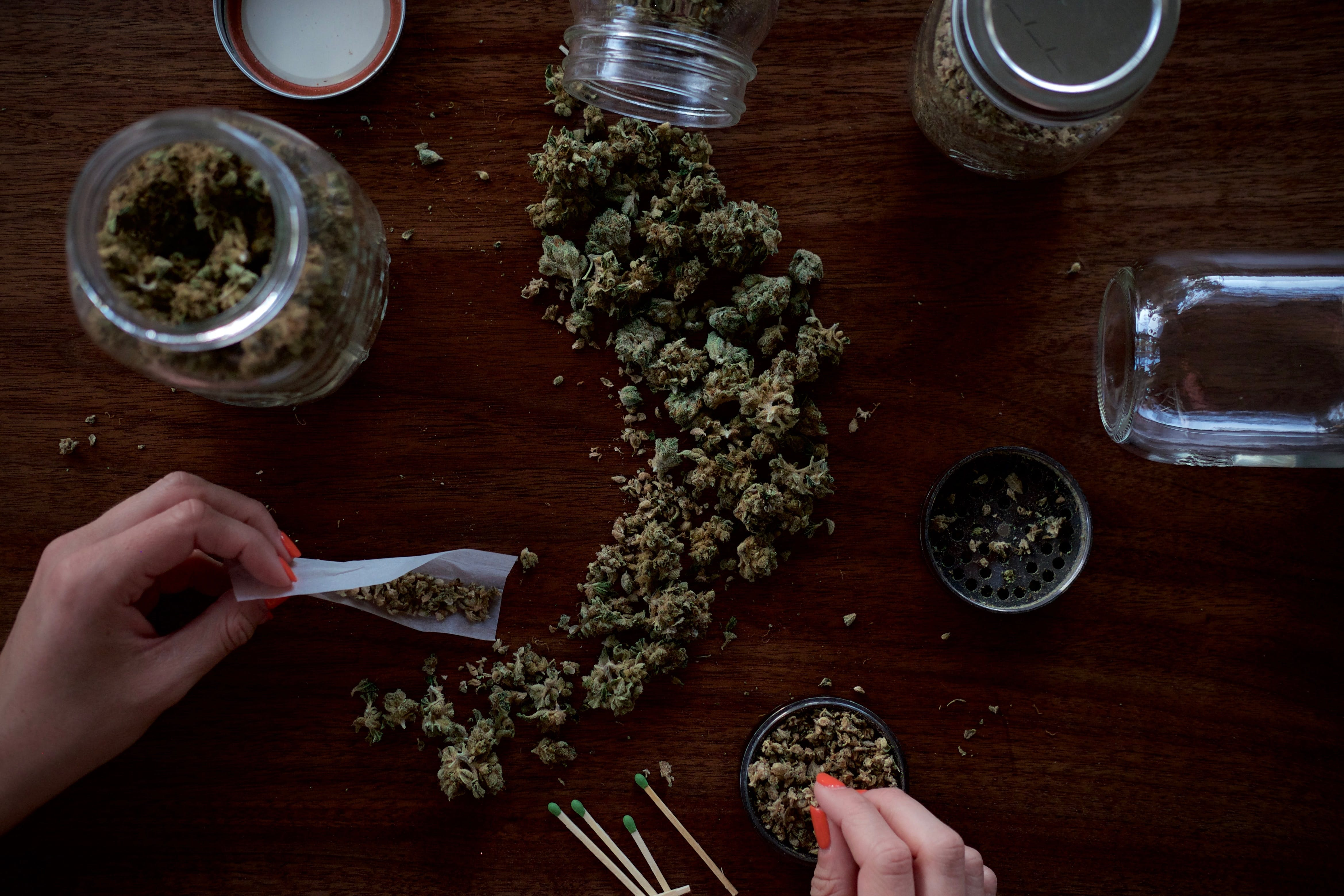 Top down image of dry cannabis flower, rolling a joint