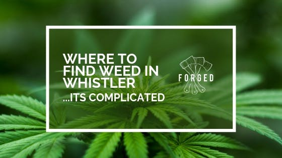 The Struggle to Find Marijuana in Whistler is Real - 2019 Update
