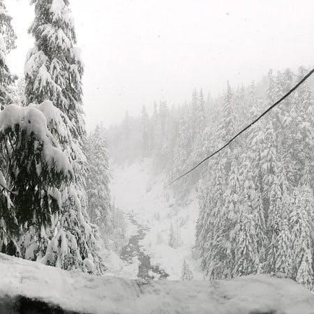 Ziptrek Winter zipline in Whister