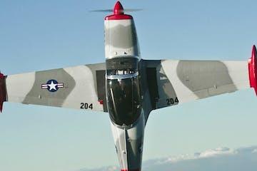 Marchetti SF-260
