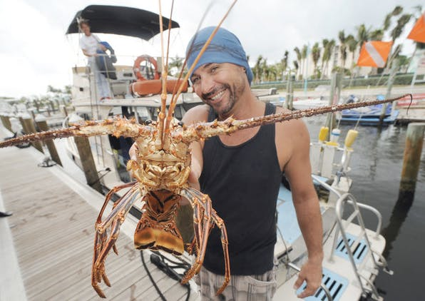 Lobster Mini-Season 2018!   Key West Food Tours