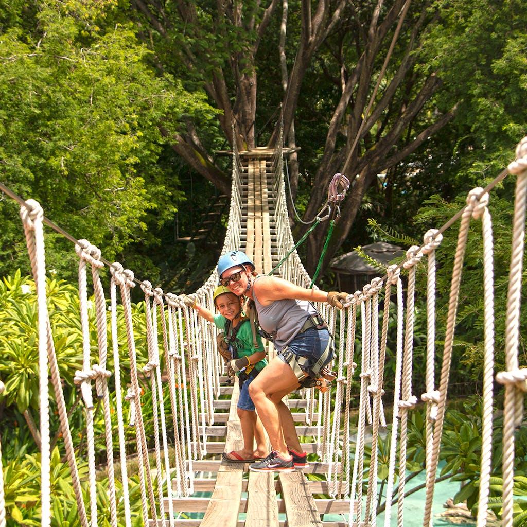 Diamante hanging bridge