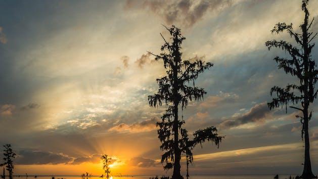 kayak, kayak tour, kayaking, new orleans kayaking, landscape, landscape photography, louisiana, louisiana landscape photography