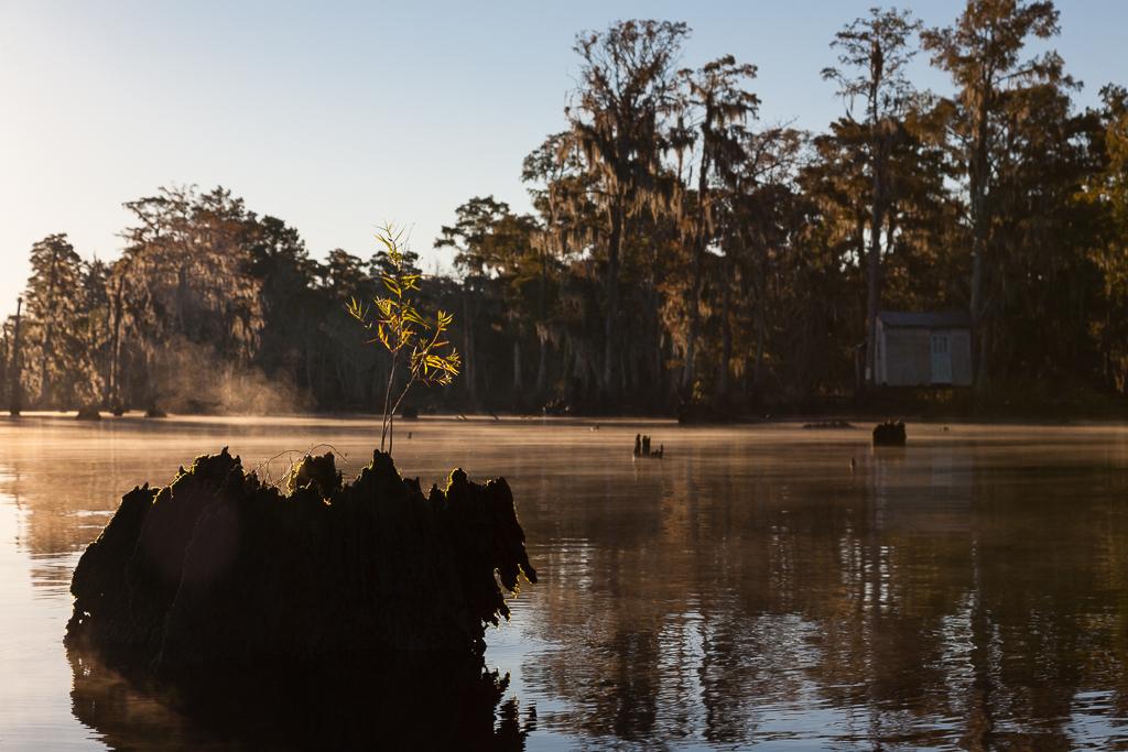 kayak, kayak tour, kayak tour new orleans, landscape swamp photography