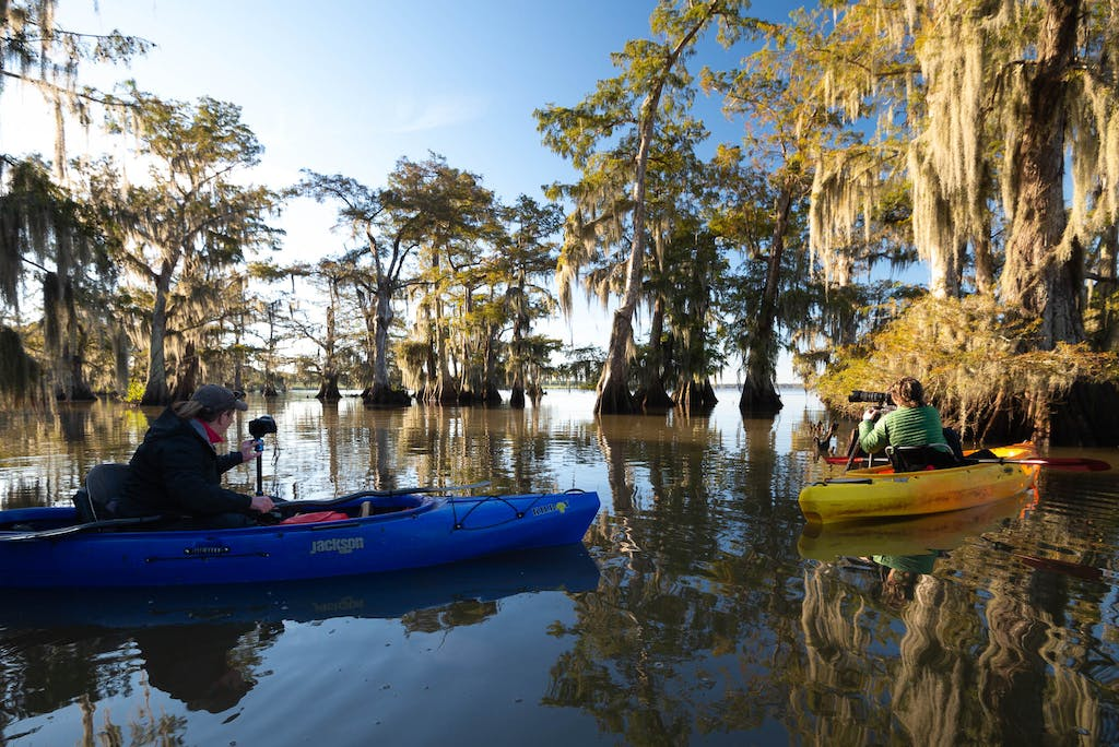 photographing from the kayak in the swamp