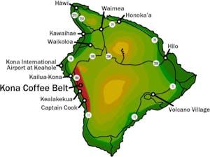 Kona Coffee Turns A Cup Of Jo In To A Cup Of Aloha | Glove Hawaii on kona snorkeling map, pineapple tour map, hawaii tour map, kona hawaii, kona shopping map, kona beach map, ywam kona map, kona road map, kona state parks, kona makai map,