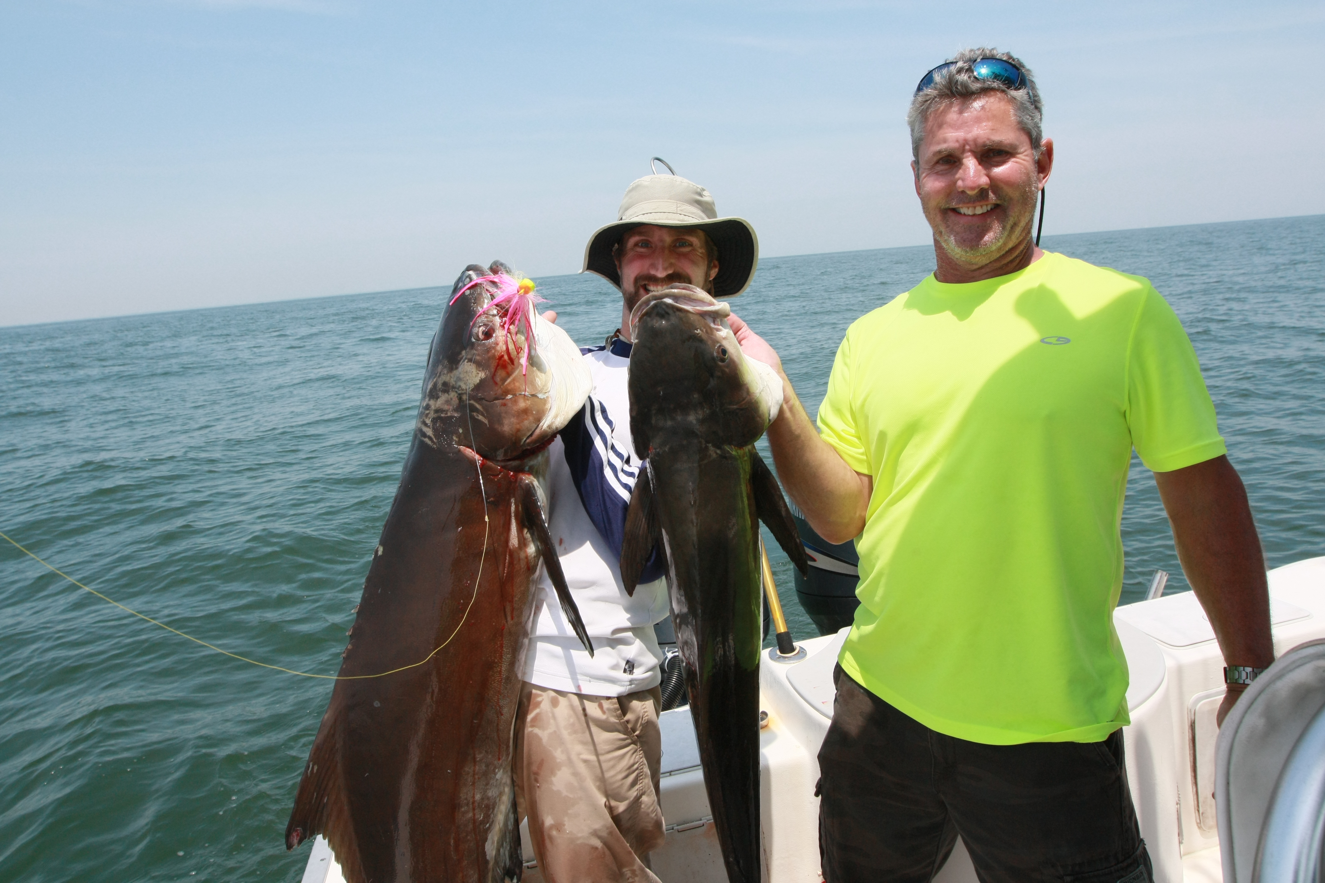 Chesapeake bay fish finao sportfishing for Chesapeake bay fish
