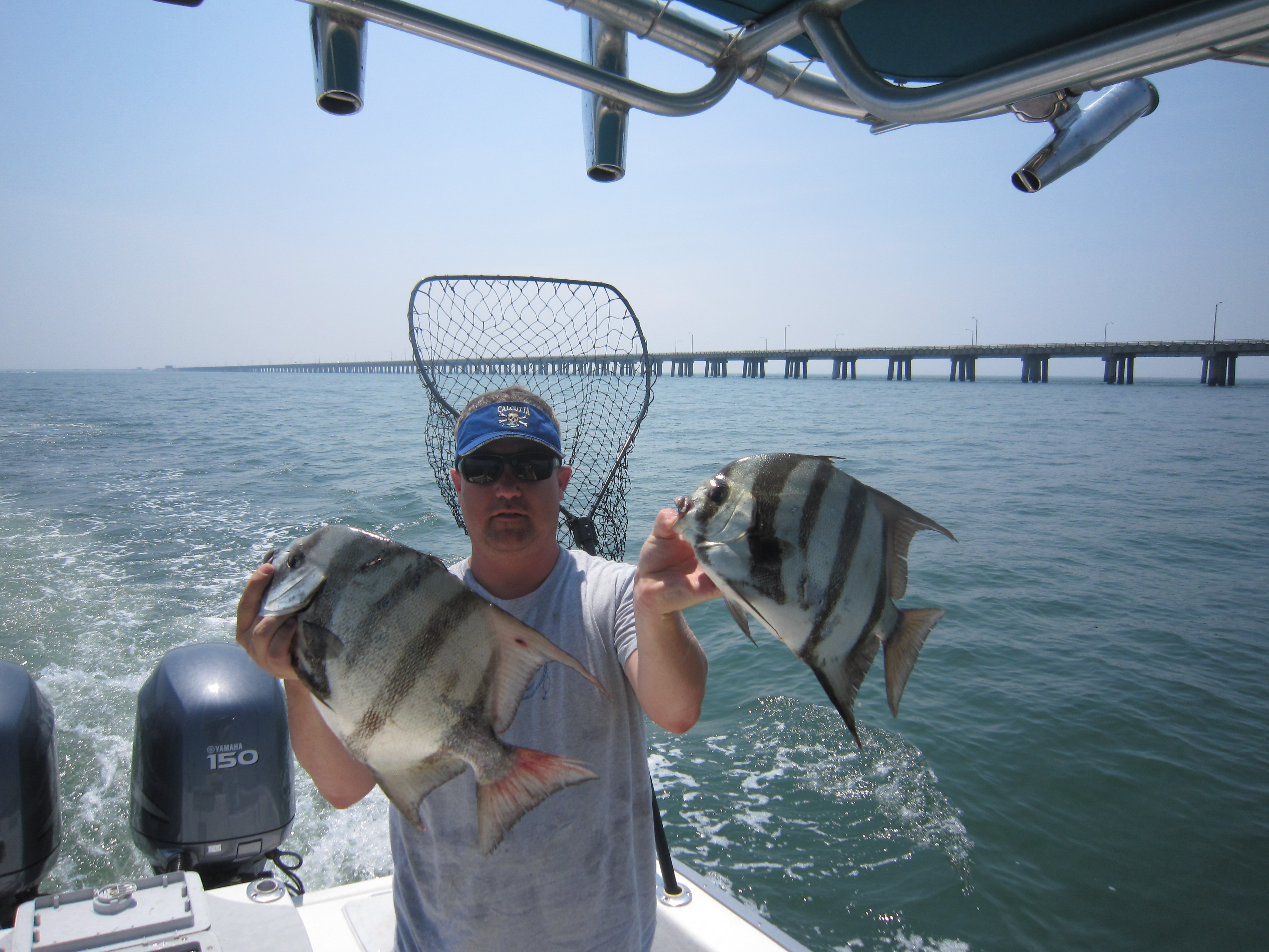 Charter fishing finao sportfishing for Chesapeake bay fishing