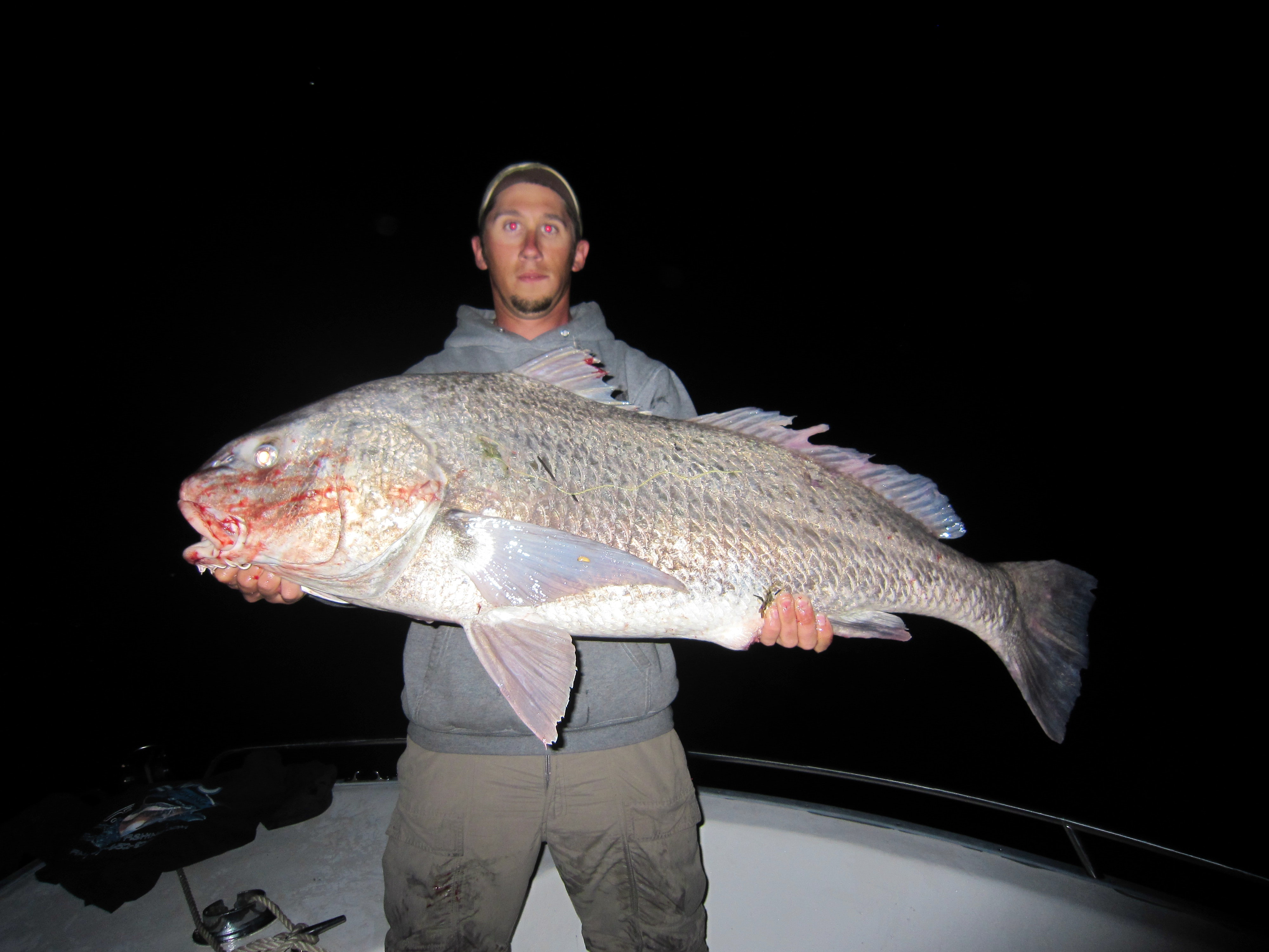 A man poses with a huge drum fish caught in Virginia
