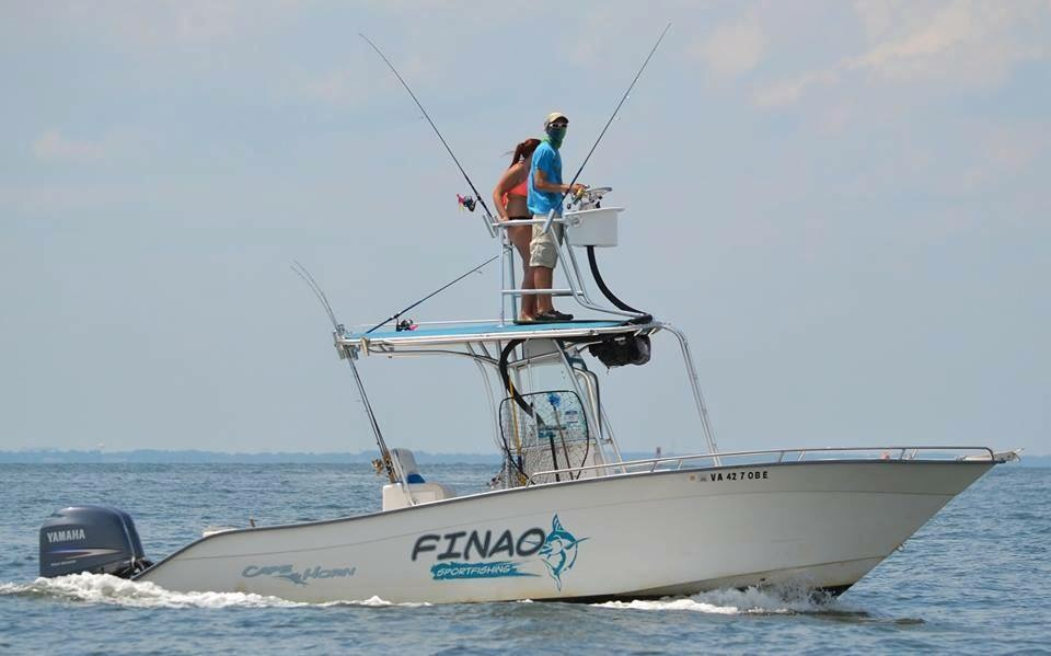Virginia fishing charter finao sportfishing for Va fishing charters