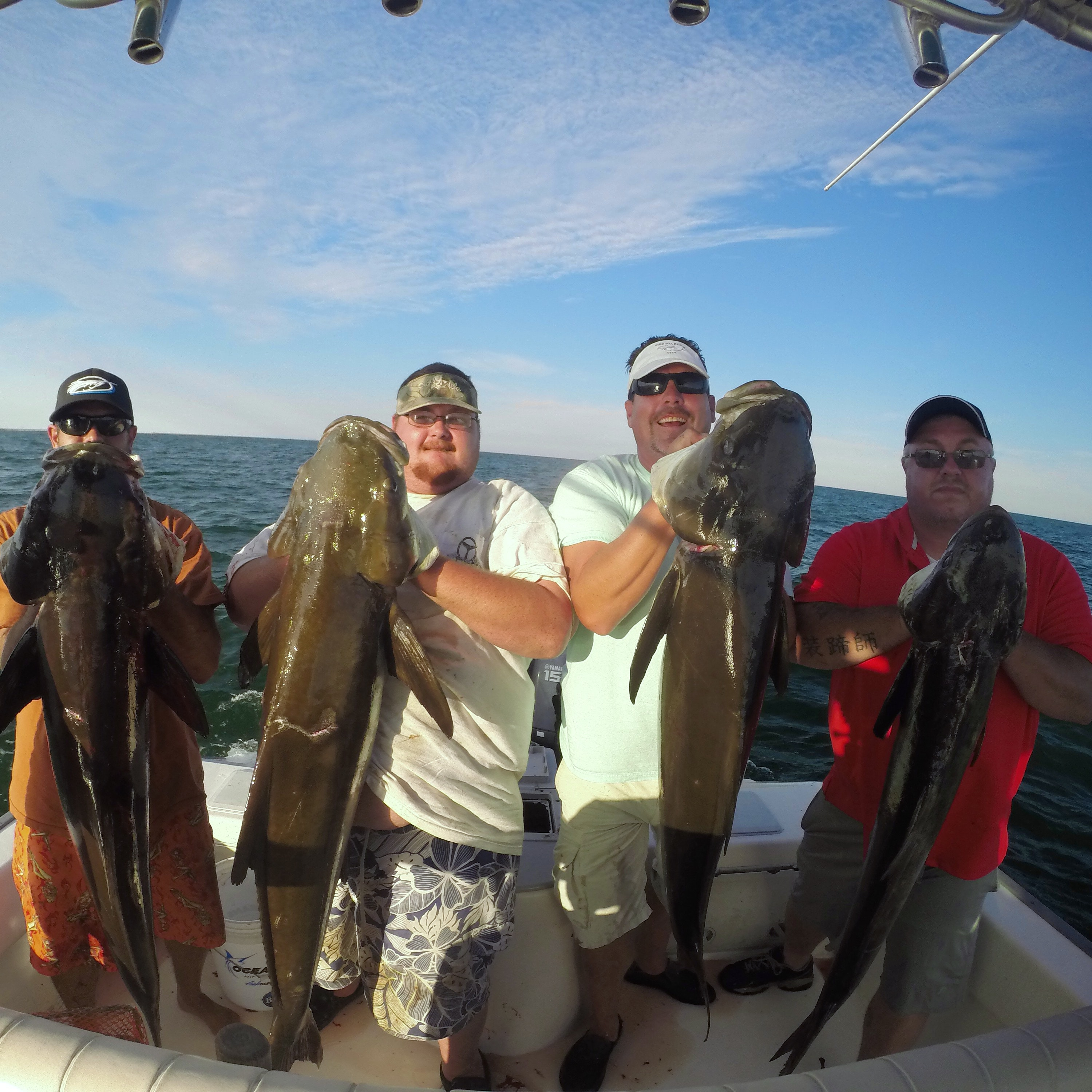A group of men show off their catches on a cobia fishing charter
