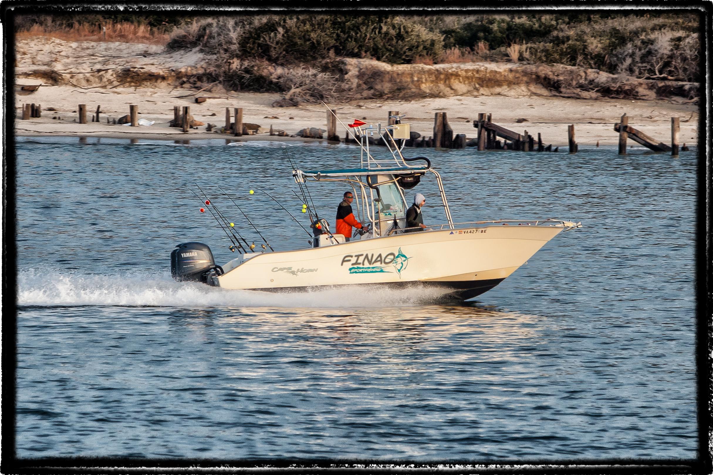 Norfolk fishing charter finao sportfishing for Fishing charters hampton va