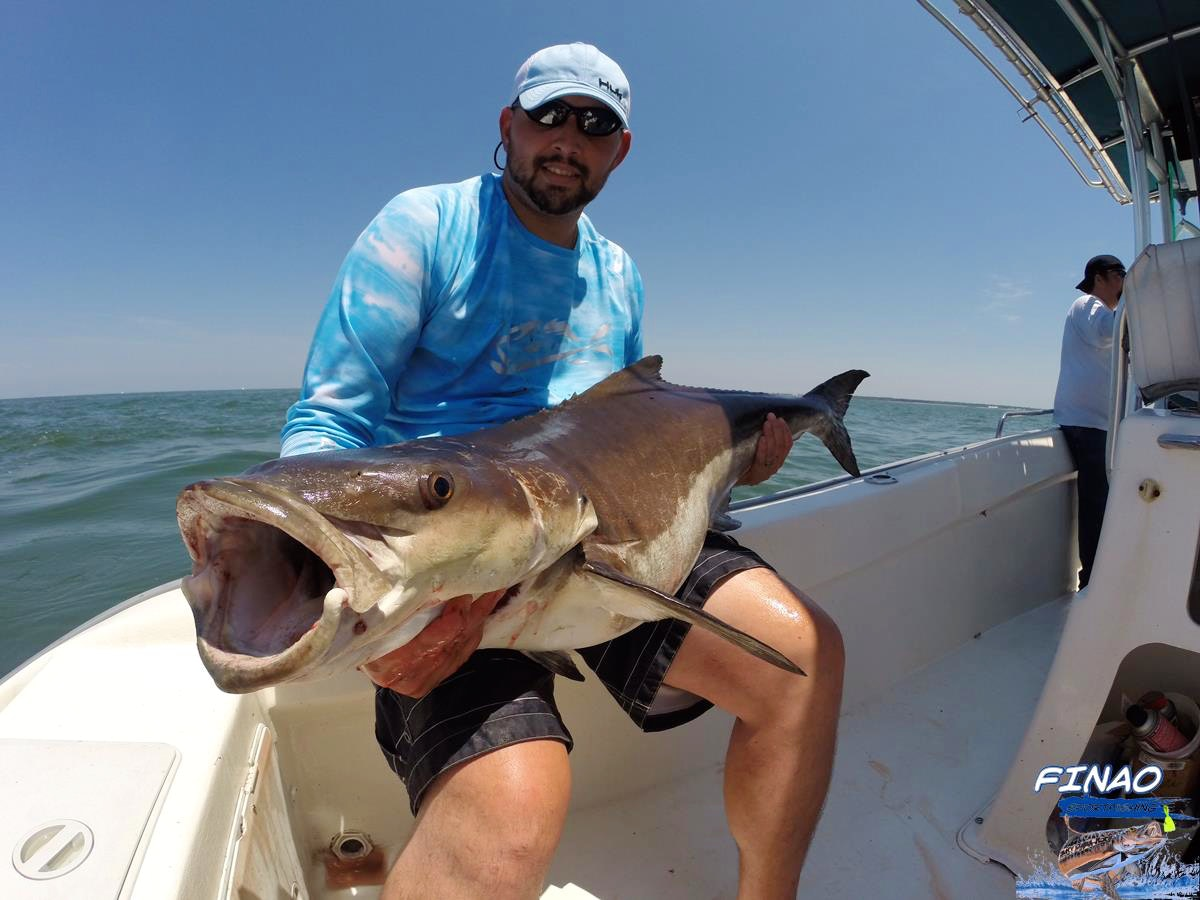 saltwater charter fishing