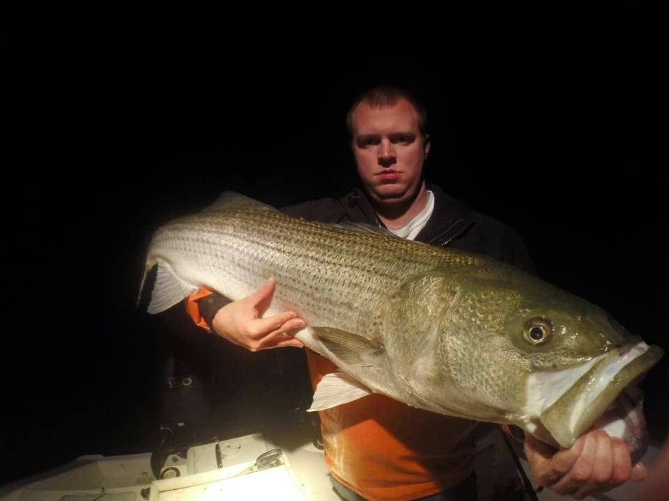 virginia beach striped bass fishing