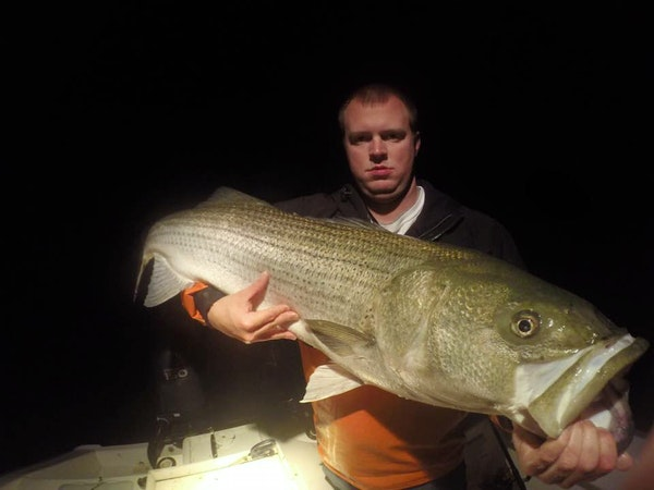 virginia beach striped bass fishing