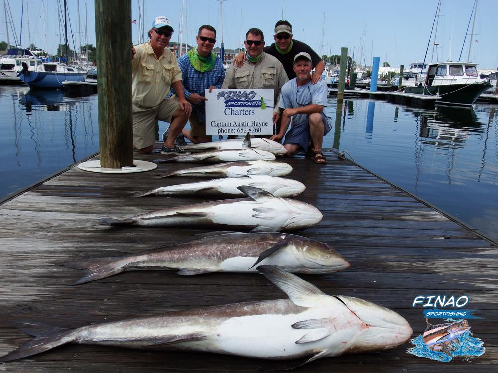 chesapeake bay fishing charter finao sportfishing