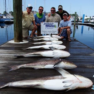 chesapeake bay fishing charter