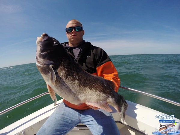 tautog fishing