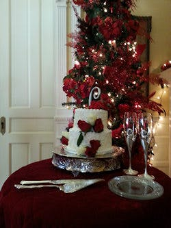 Small And Elegant Christmas Weddings In Chattanooga Mayor S
