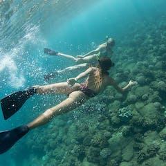 Kauai Snorkeling Tours