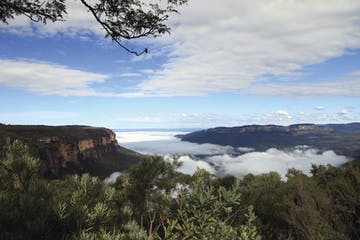 A cloud of mist rolling through the Valley