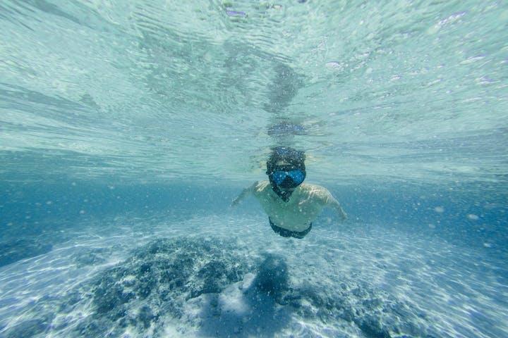 Boy Snorkeling in Kealakekua Bay