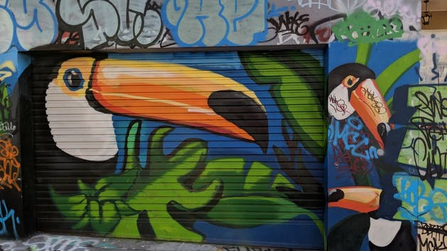 Newtown Toucan Graffiti