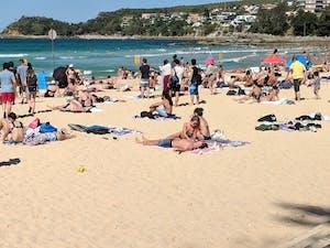 Manly Beach scene