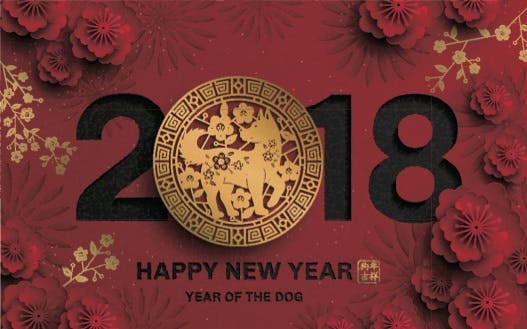 the lunar new year or chinese new year is right around the corner and in hawaii its a pretty big deal from block party celebrations to household