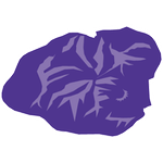 Kauai island Icon click to for Kauai tours