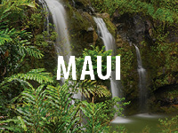 Click for Maui Tours