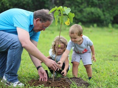 father and 2 kids planting a tree