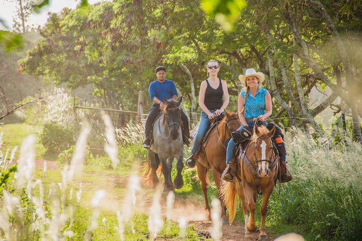 3 people on huge horses going down a trail