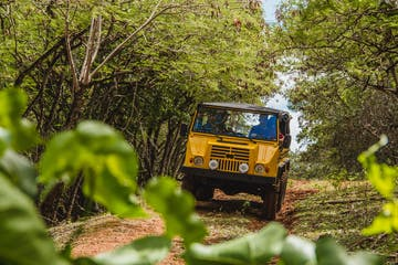 yellow off road vehicle going down a trail
