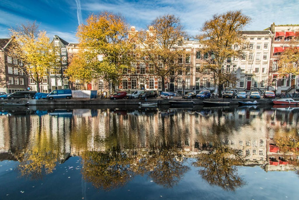Houses behind trees on Canal in Amsterdam