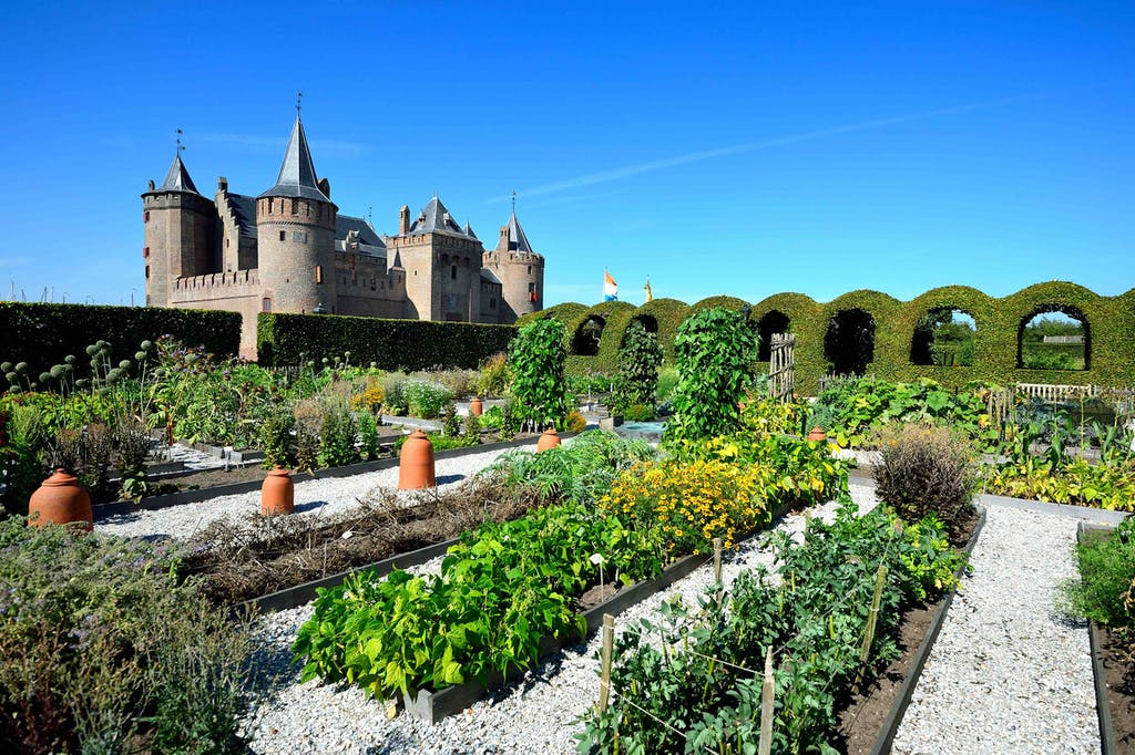 a garden in front of a castle