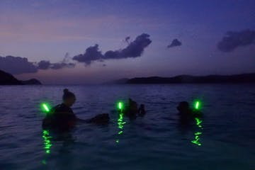 Divers with glow sticks