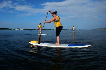Three people Stand Up Paddleboarding on Bay