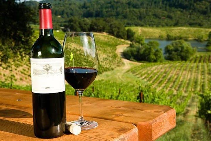 wine at a vineyard