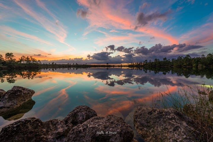 The Everglades National Park Photography Tour