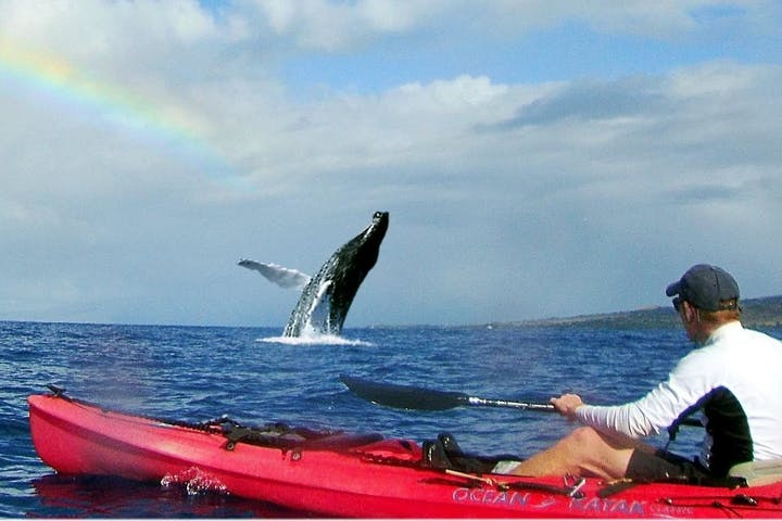 kayaking near maui with a rainbow in the distance