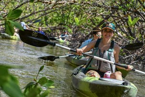 Mangrove Tunnel Kayaking