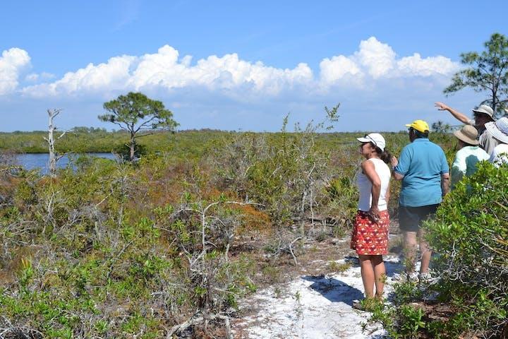 Coastal Scrub Excursion