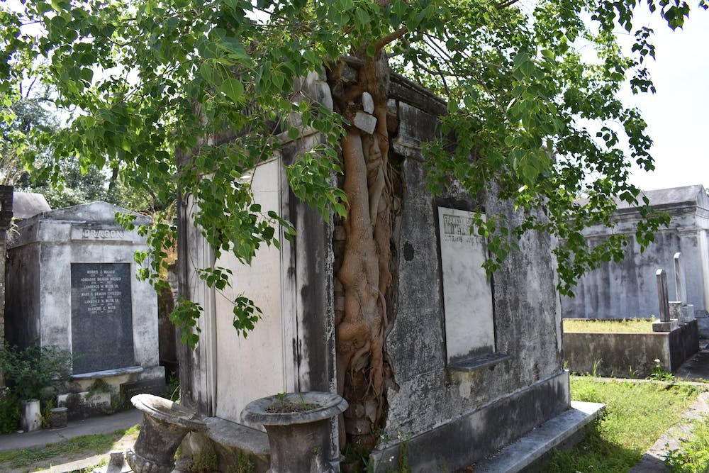 A Self Guided Tour Of Lafayette Cemetery 1 Lucky Bean Tours
