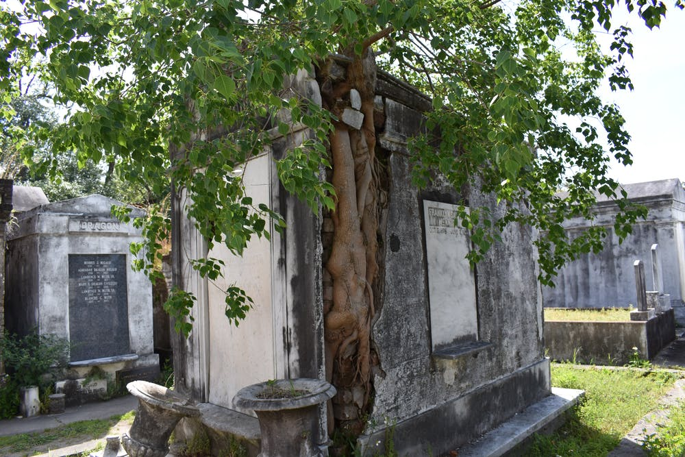 A Self-Guided Tour Of Lafayette Cemetery #1 | Lucky Bean Tours