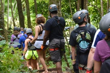 People walking through the forest getting ready to zipline