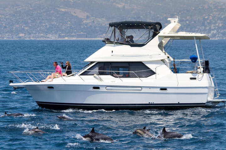 ORCA Private Charter