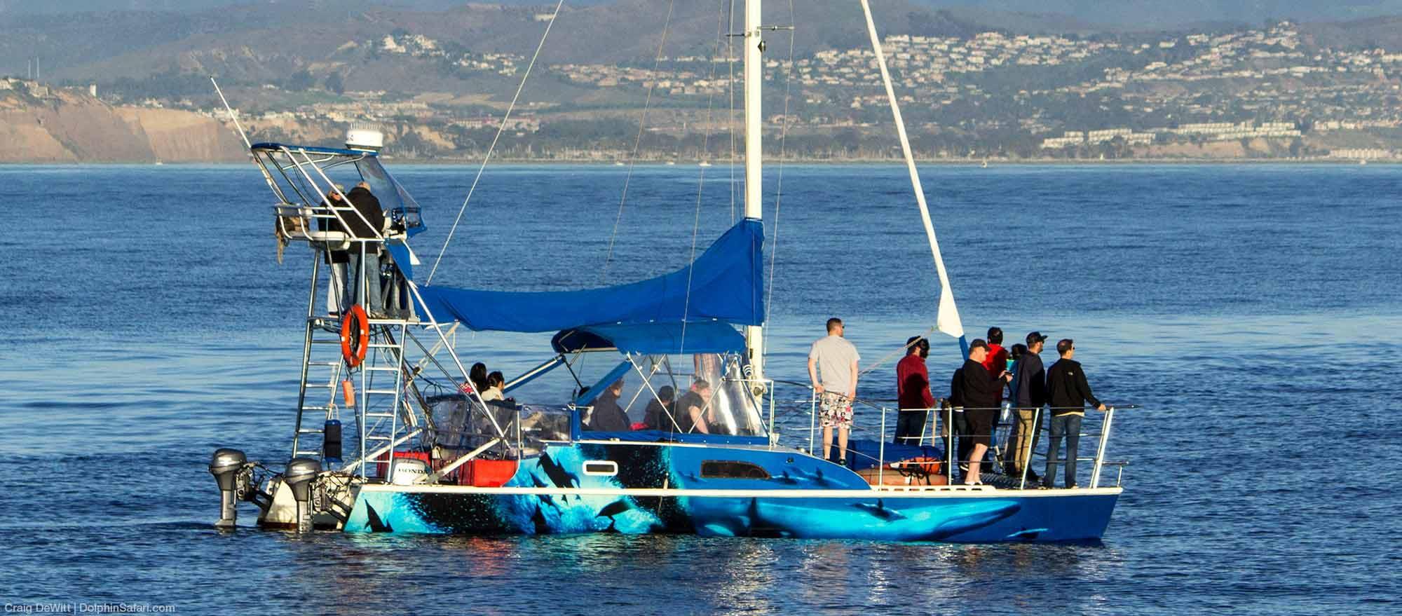 DolphinSafari Boat