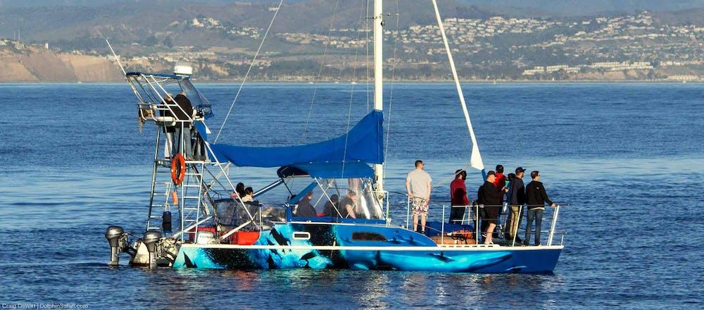 DolphinSafari Catamaran Sailboat